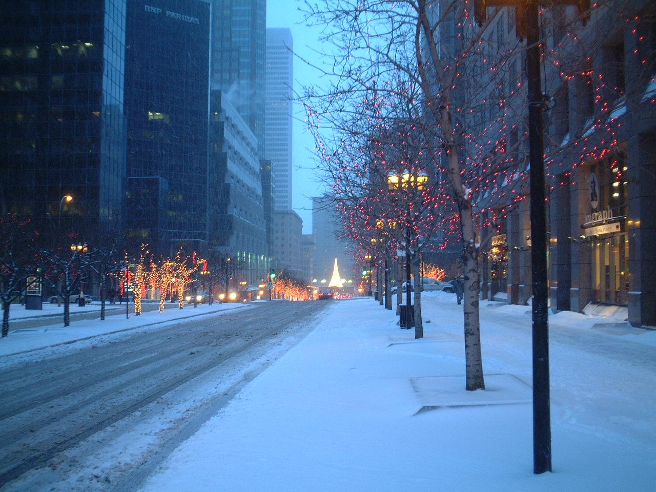 Montreal - Avenue Mc Gill 5