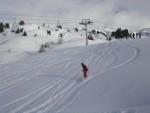 steph en snow